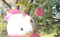 blog_import_553e35362136e