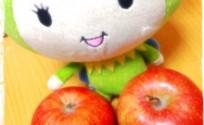 blog_import_553e397e5b78d