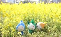 blog_import_553e3a0dc55de