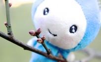 blog_import_553e3dd3453ce