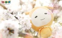blog_import_553e3e6ab371c