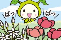 花の妖精キャンディーの春。